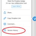 dropbox-badge-a-collaborative-tool-in-microsoft-office-windows-and-mac-17191