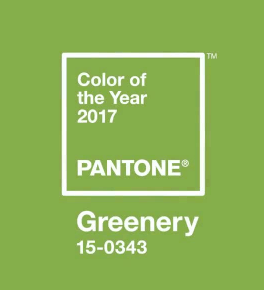 pantones 2017 color of the year in office 11735 - Pantone's 2017 'Color of the year' in Office