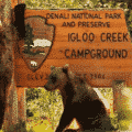 the-real-national-park-font-is-now-available-for-office-microsoft-office-26110