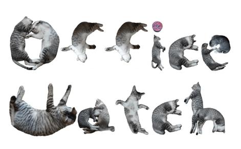 Nekofont - Nekofont - the cat font