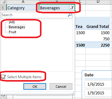 Multiple Selections in Slicers for Excel PivotTables