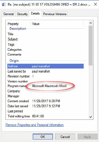 microsoft name origin